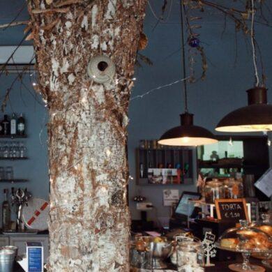 share-wood-torino