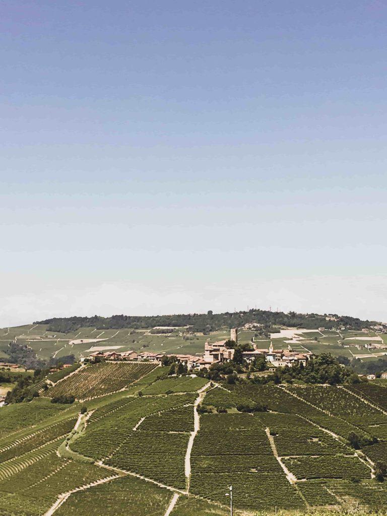 """Alba, la """"Capitale"""" delle Langhe: tra architettura e cibo di-vino!"""