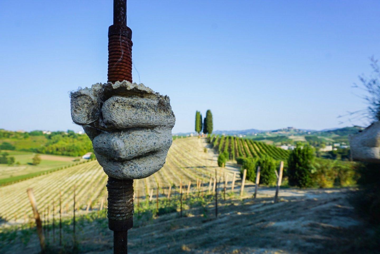 Da Michele Chiarlo – tra vino e arte nelle langhe