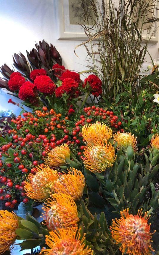 Domitilla-fiori-milano