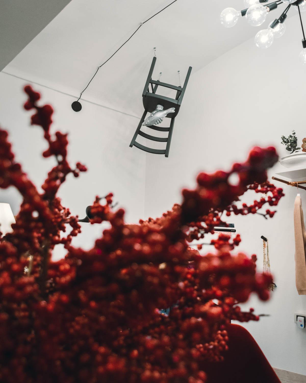 La camera incantata | un anno di sogni e sostenibilità