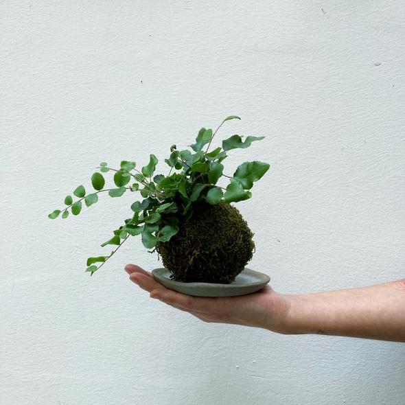guida regali natale torino bottega botanica