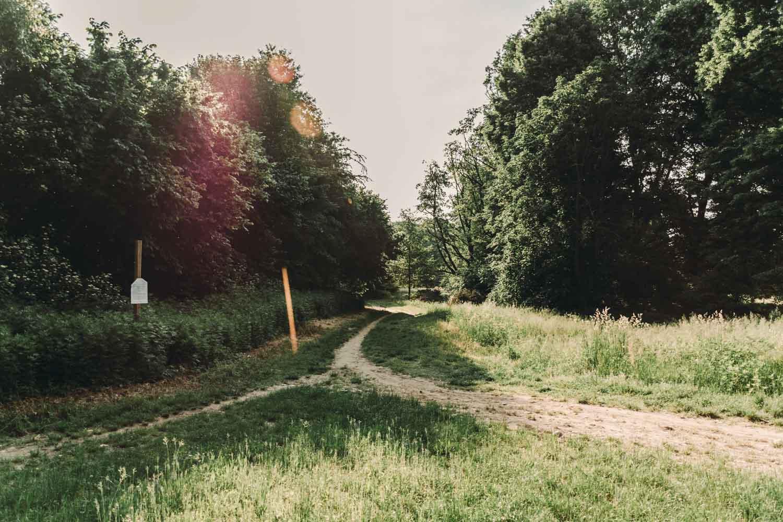 dove correre a torino