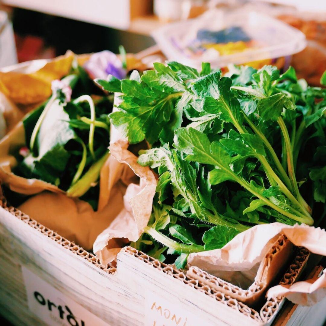 prodotti-locali-torino-azienda-agricola-ortobio