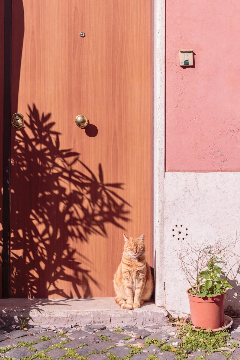 Borgo di Ostia Antica: la chicca (in rosa) da scoprire
