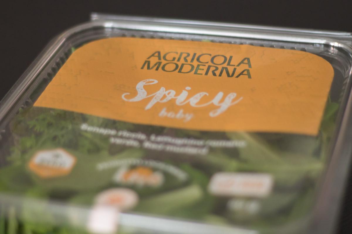 Agricola Moderna – una vertical farm a Milano