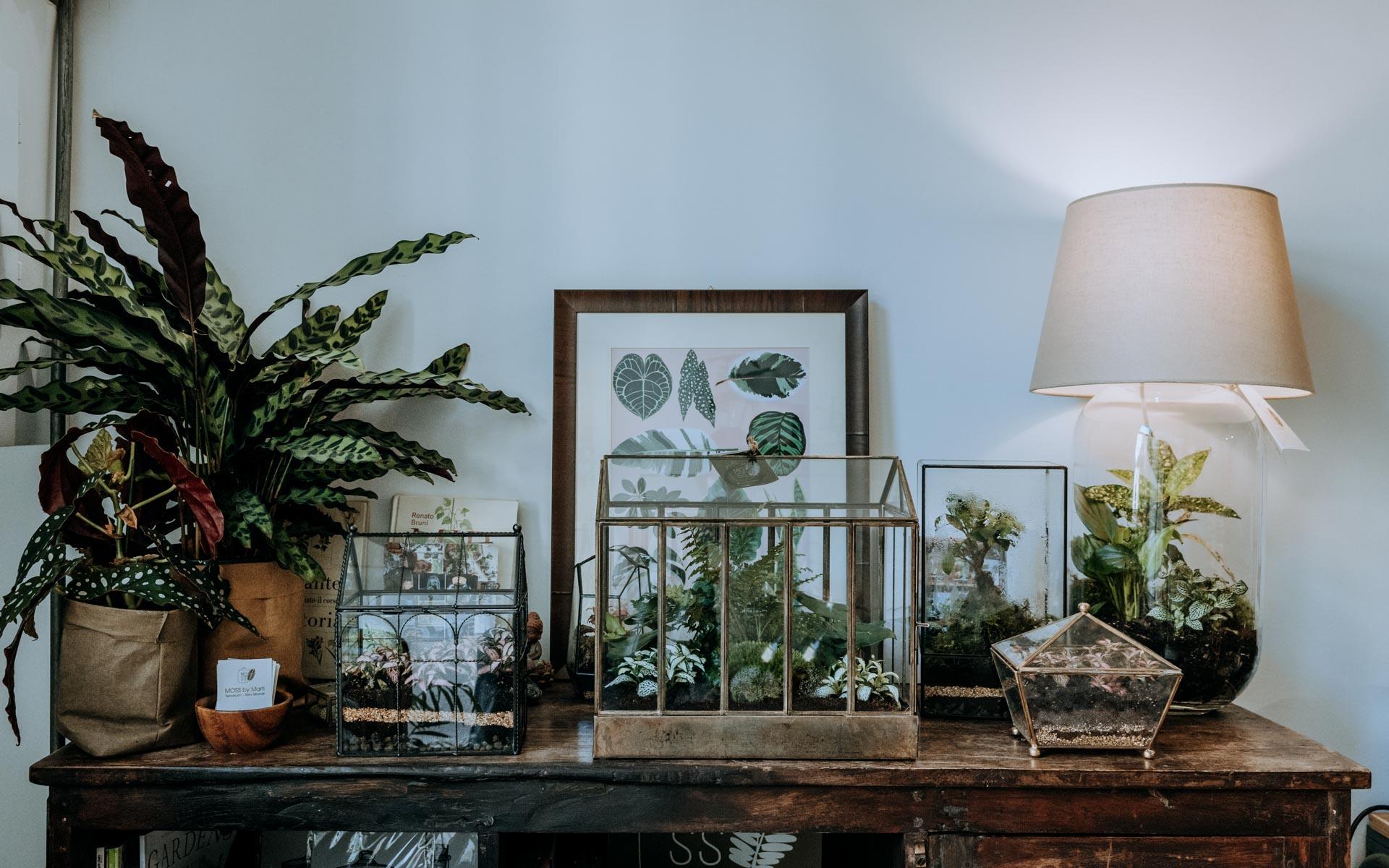 Moss By Marti – L'arte della delicatezza che genera emozioni