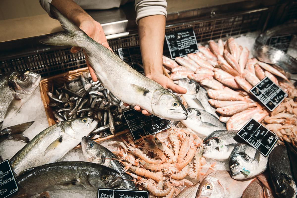 pesca-sostenibile-eataly-torino-nando-fiorentini-17