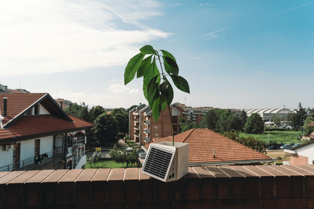 Arianna: il vaso che misura la qualità dell'aria